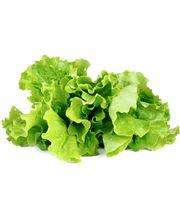 Click and Grow semínka do květináče zelený salát
